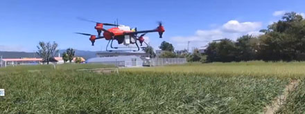 DRONE1 - AI-driven drone seeding revolutionizes rice farming